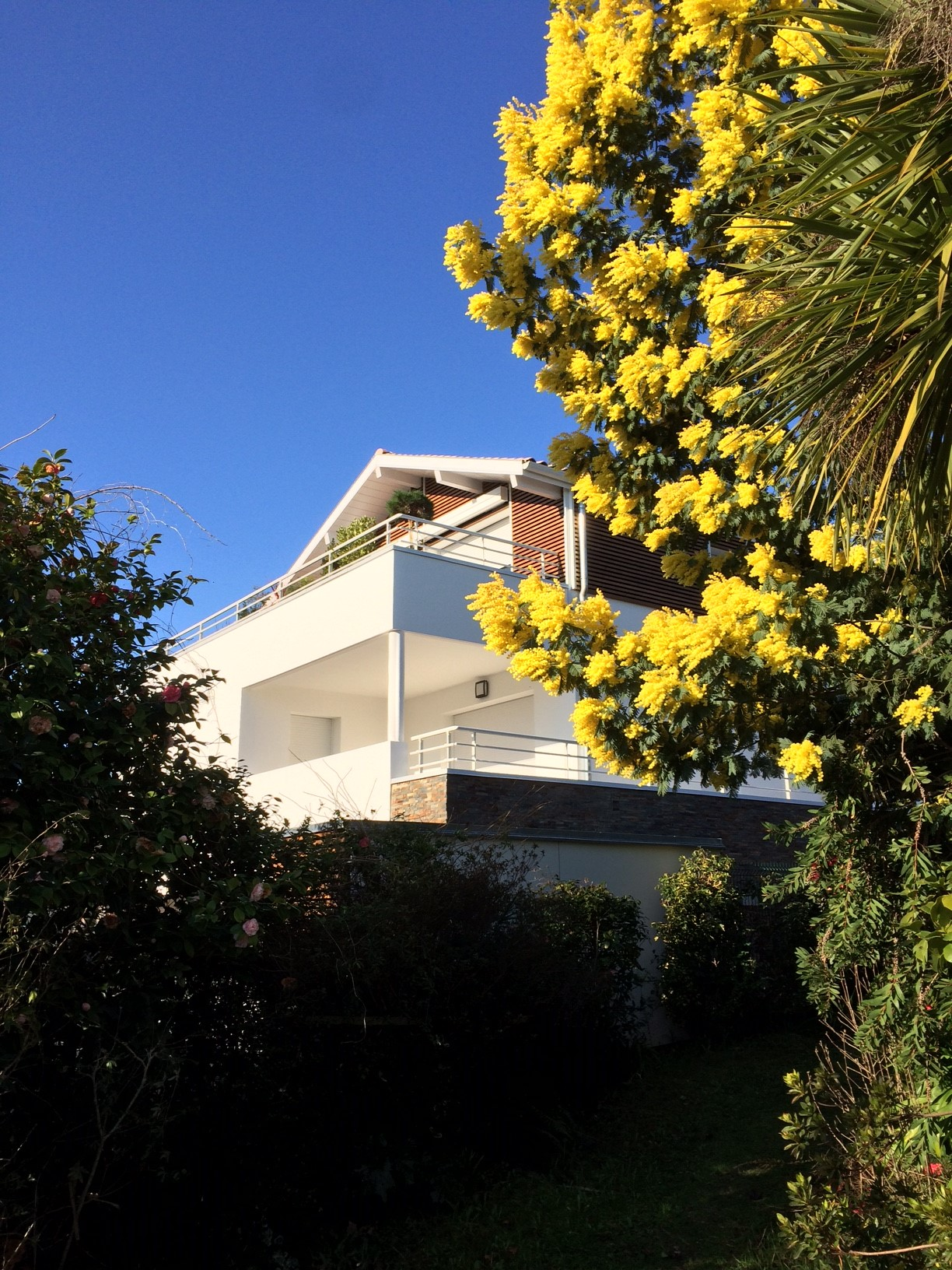 Résidence COMETE 7 logements      – ANGLET